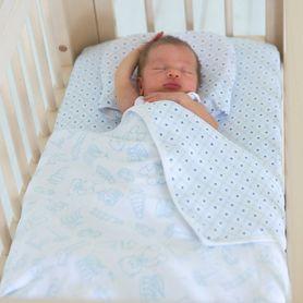 Living Textiles Jersey Bassinet Comforter Set Toy & Gio Blue 2 Piece