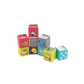 ELC Jungle Wonder Cube