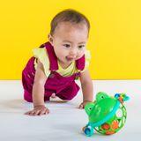 Oball Jingle & Shake Pal Frog image 3