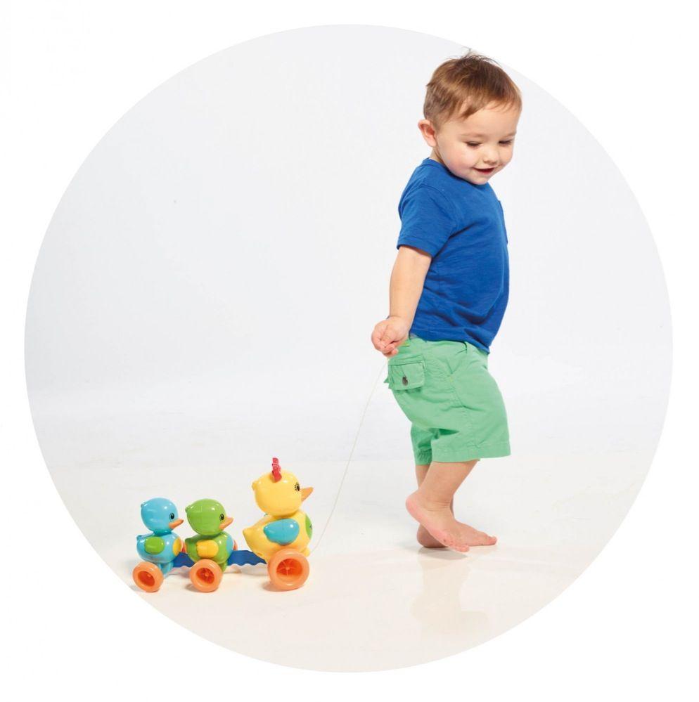Tomy Toomies Quack Along Ducks image 3
