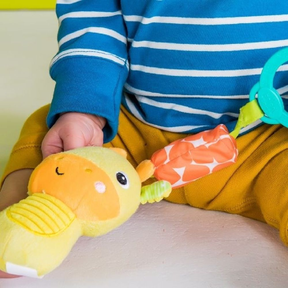 Bright Starts Chime Along Friends Giraffe