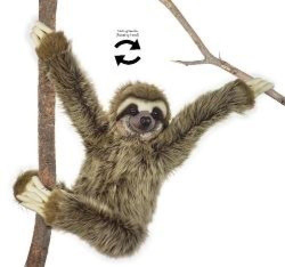 National Geographic Giant Plush Sloth 80cm