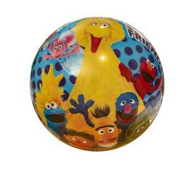 Sesame Street 23cm Ball