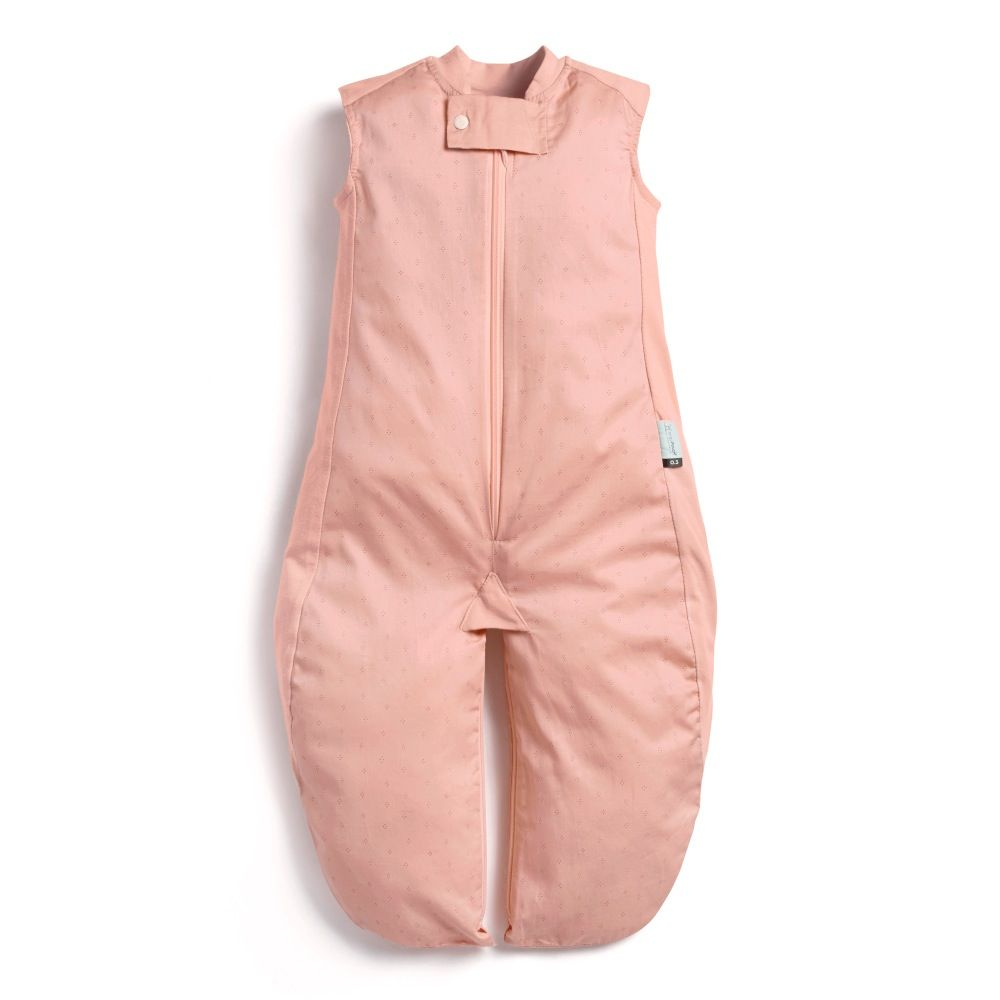 Ergopouch Sleep Suit Bag 0.3 Tog Berries 8-24 Months image 0