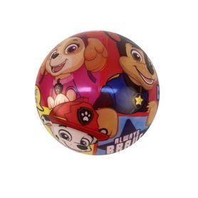 Paw Patrol 23cm Ball - V2